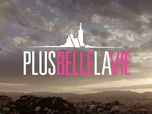 Plus belle la vie, la collec' - Saison 13 - Episode 3380